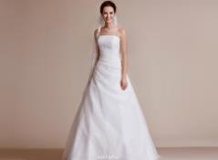 Organdy Gown