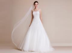 Tulle bridalgown with illusion neckline